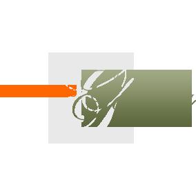 southfields gallery